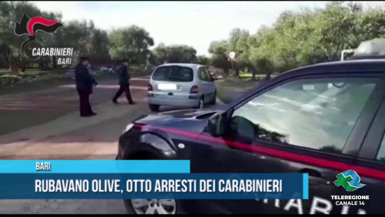 furti di olive